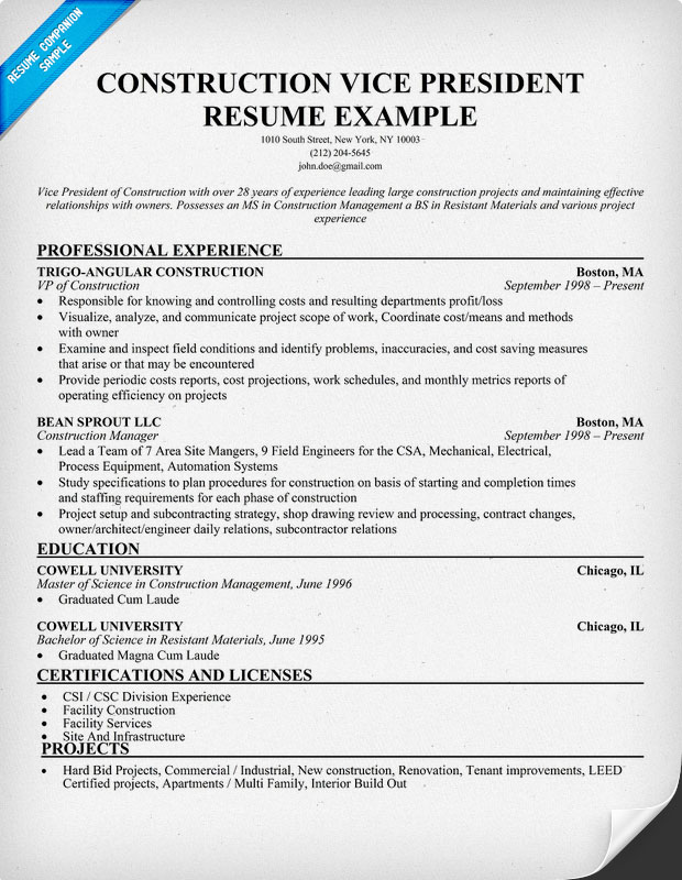 Vice President Construction Resume Sample
