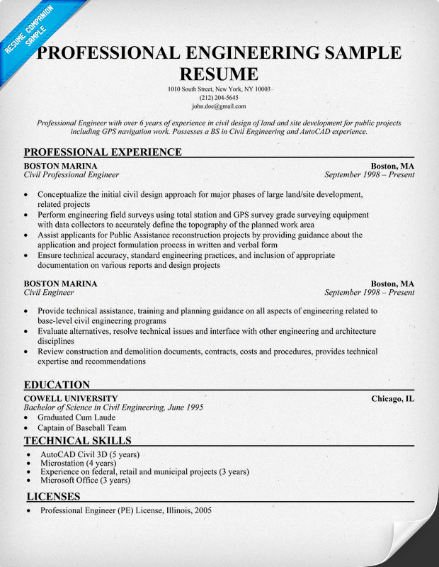 Professional Engineering Resume Sample