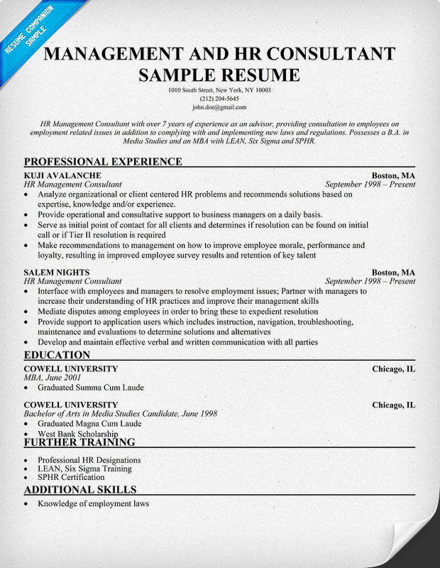 Management And HR Consultant Resume Sample