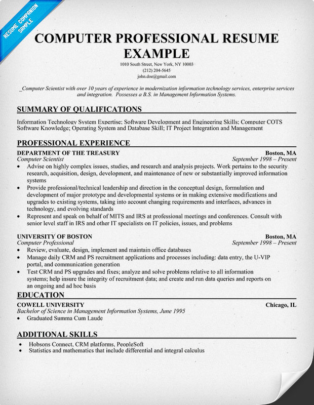 Computer Professional Resume Example for Free