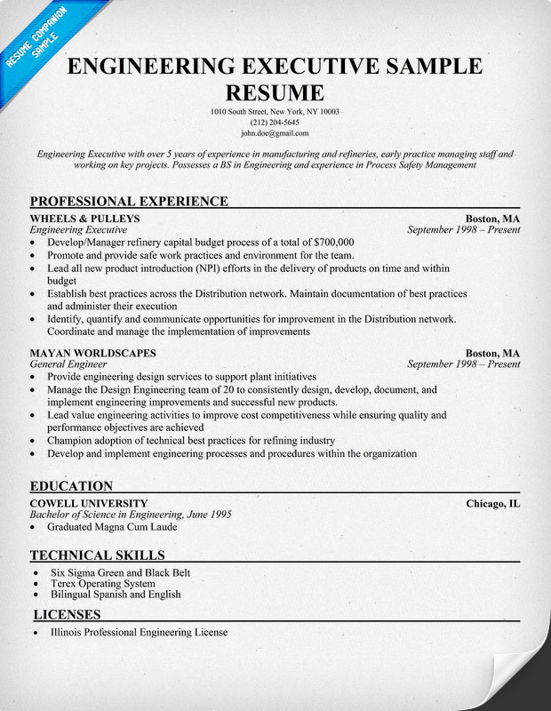 Engineering Executive Resume Sample