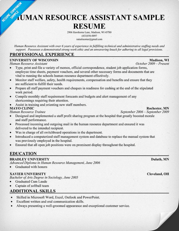human resources assistant sample resume free resume template
