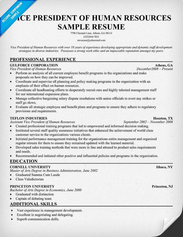pin vice president resume sle exle executive resumes