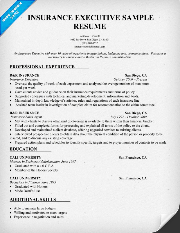 Insurance Executive Resume Sample