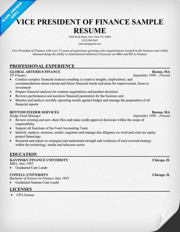 Vice President of Finance Resume Sample