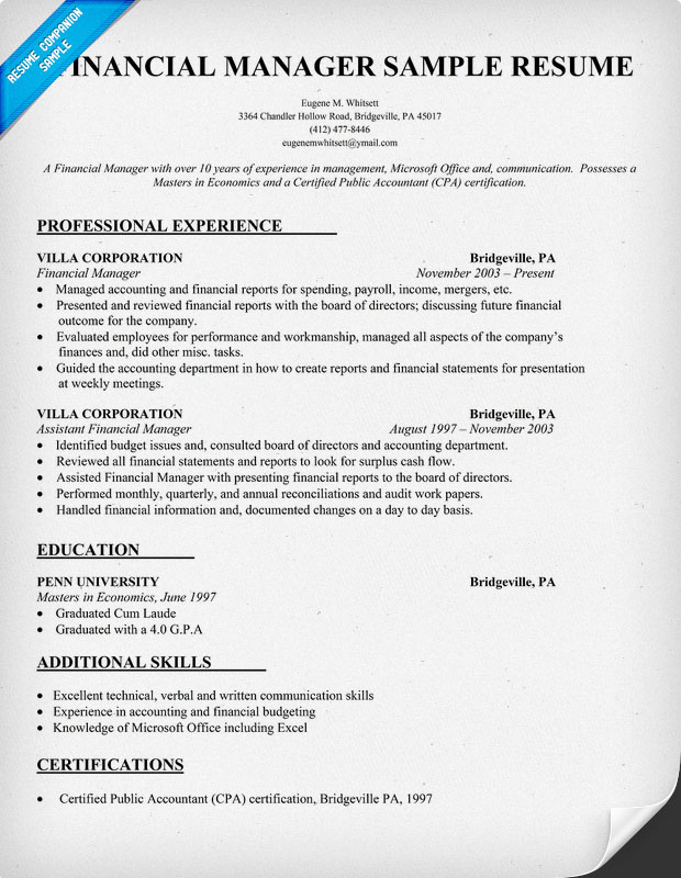 Finance Manager Resume Examples Resume Template